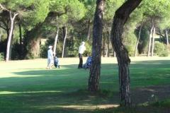 GolfNuevoPortil006