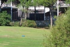 GolfNuevoPortil007