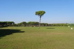 GolfNuevoPortil010