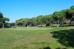 GolfNuevoPortil012