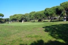 GolfNuevoPortil014