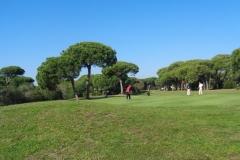GolfNuevoPortil017