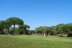 GolfNuevoPortil018