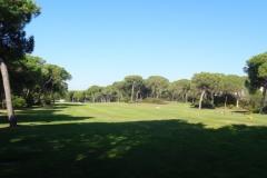 GolfNuevoPortil019