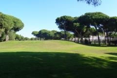 GolfNuevoPortil020
