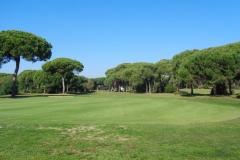 GolfNuevoPortil021