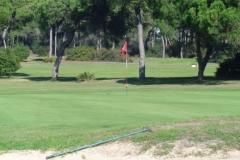 GolfNuevoPortil028