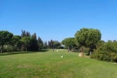 GolfNuevoPortil033