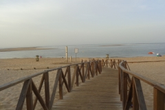 playaelportil033
