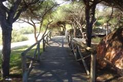 Sendero Botanico 02
