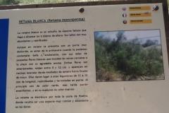 Sendero Botanico 05