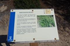 Sendero Botanico 10