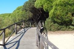 Sendero Botanico 12