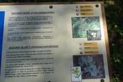 Sendero Botanico 14