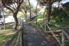 Sendero Botanico 16
