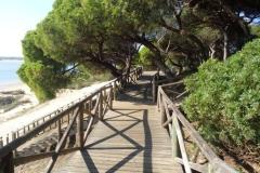Sendero Botanico 17