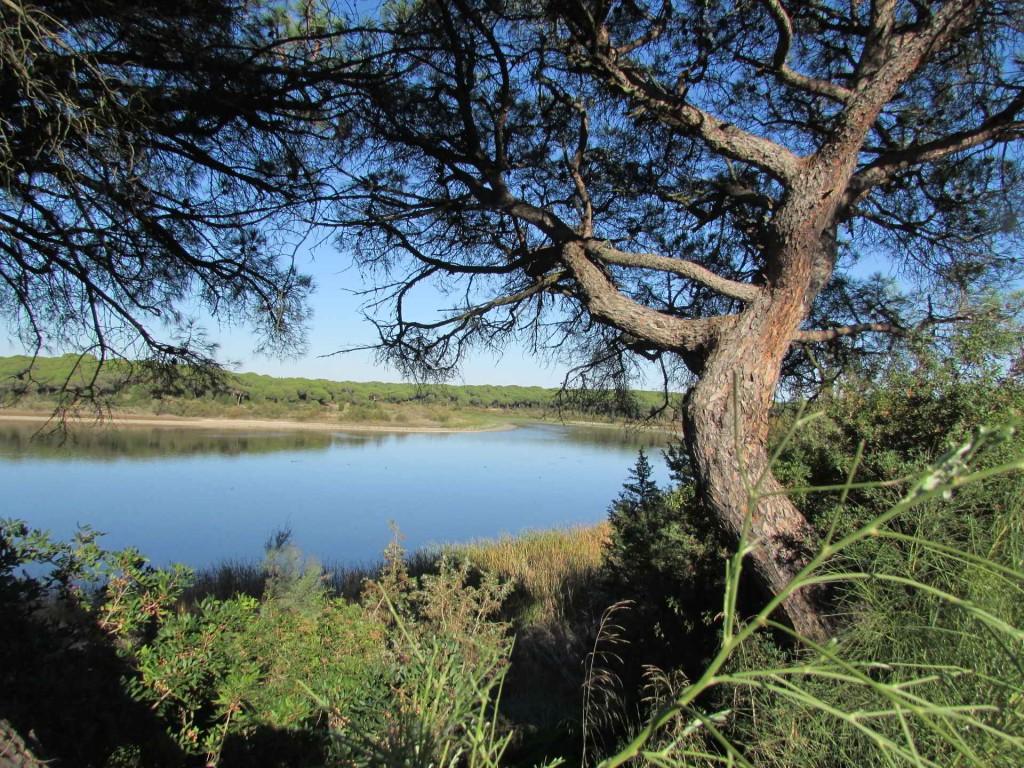 Reserva Natural Laguna El Portil