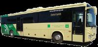 autobus_damas_El_Portil
